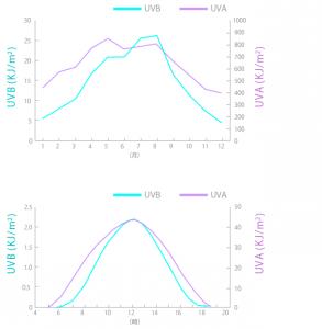 月ごとの紫外線量 出典:東海大学総合科学技術研究所 佐々木政子教授